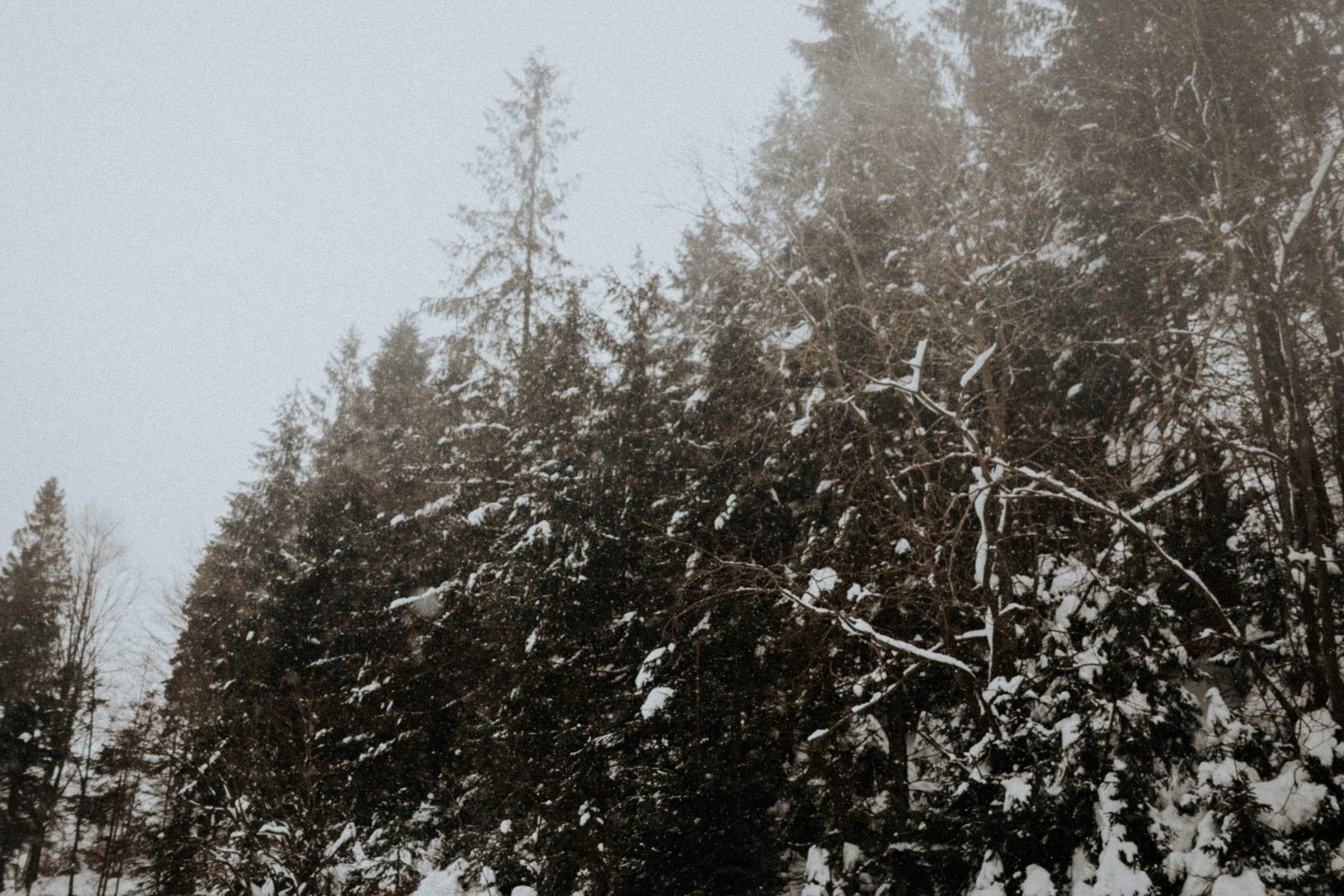 Kasia & Mariusz <br>Zimowa sesja w górach 2