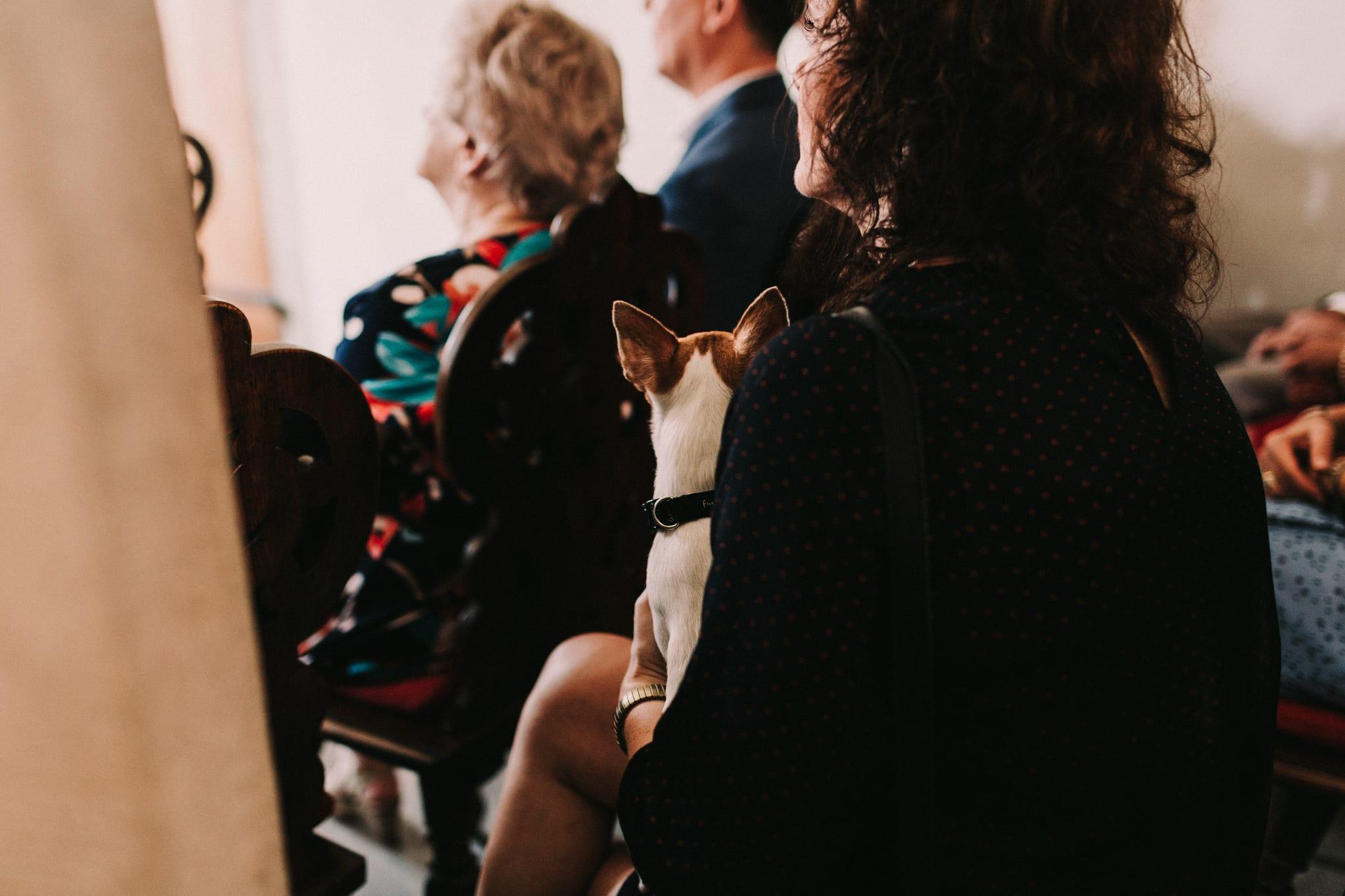 wesele w bawarii rothenburg agahipo 53