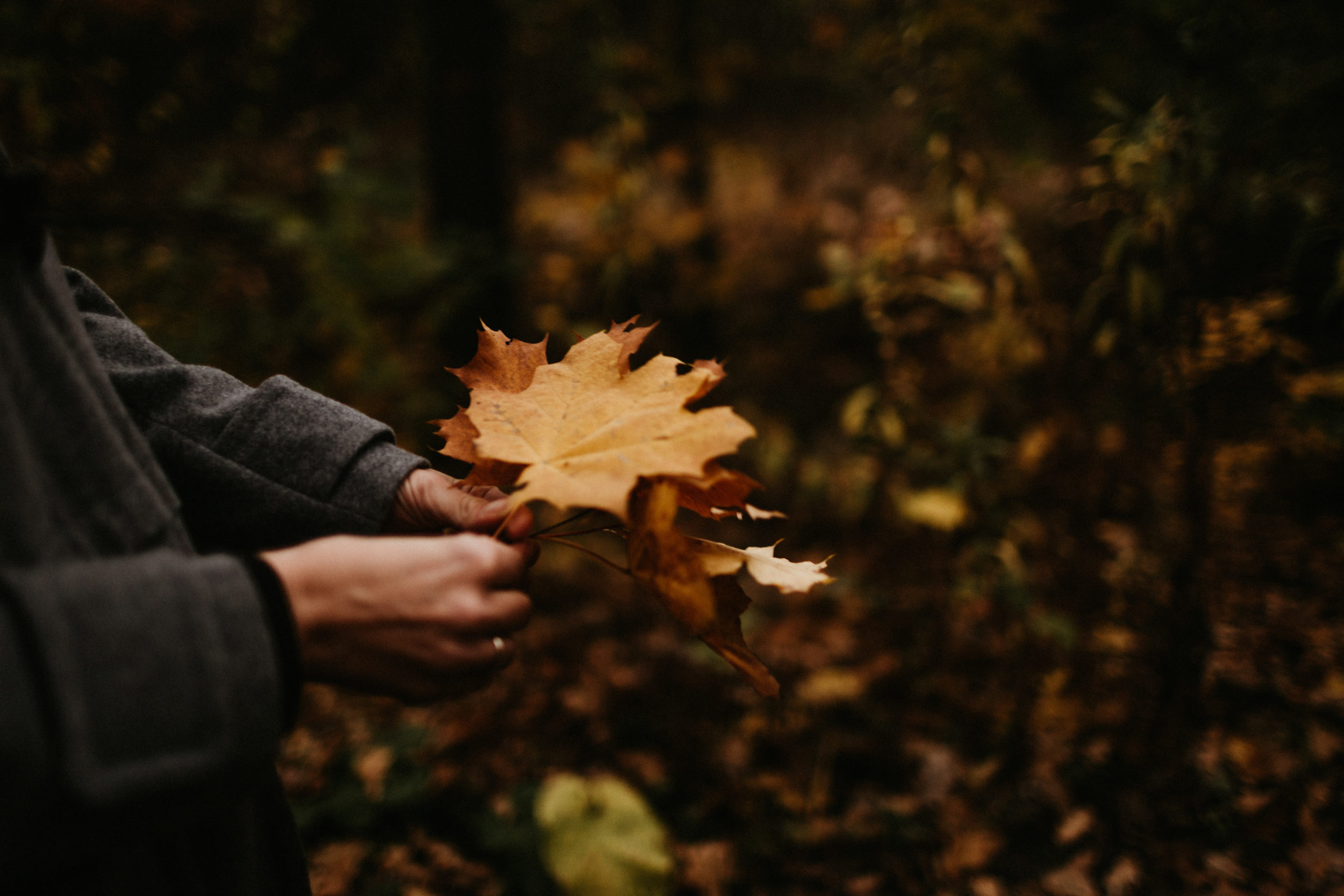 jesienna sesja rodzinna fotografia gliwice 00017