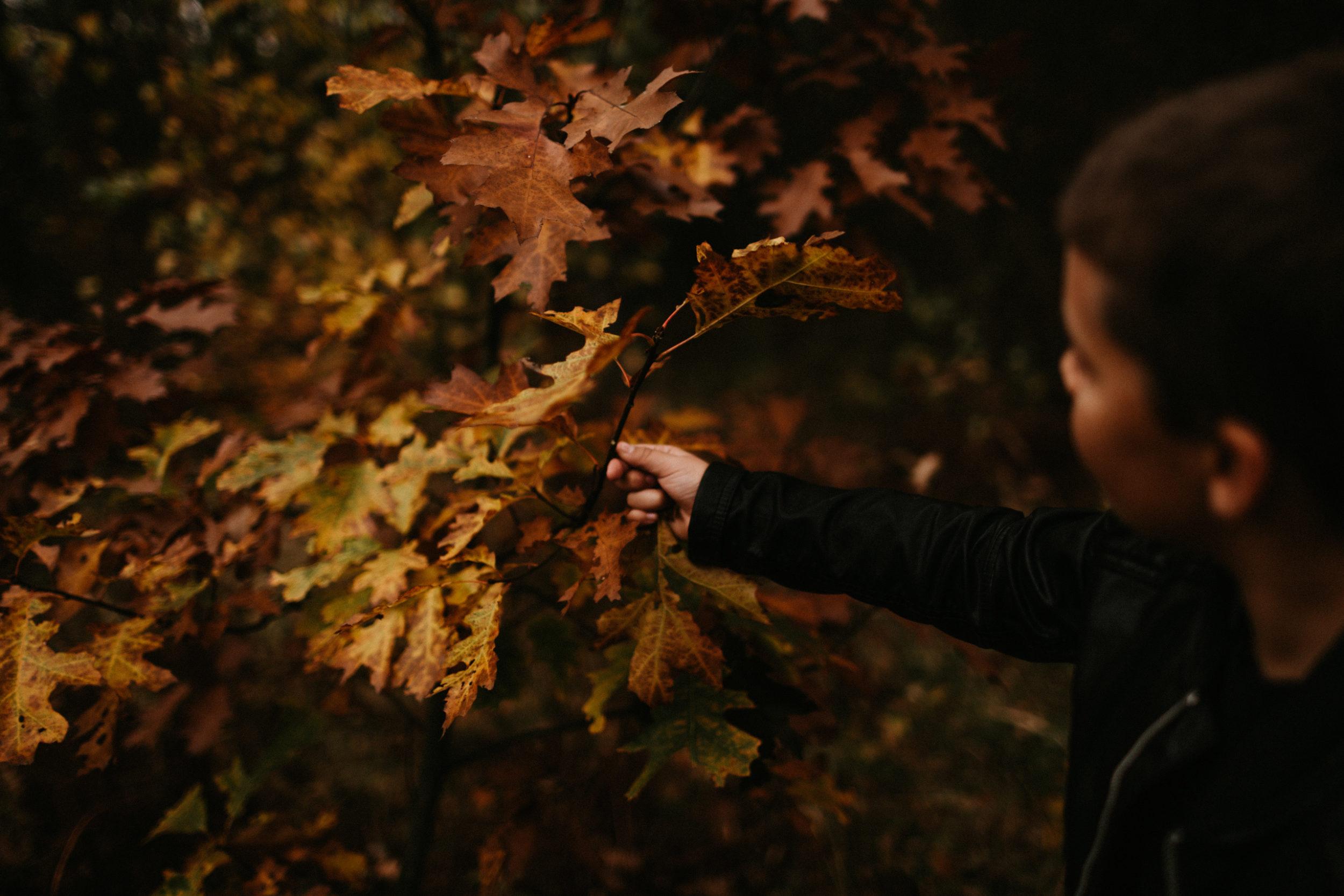 jesienna sesja rodzinna fotografia gliwice 00021